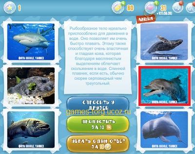 Тайны морских глубин уровень 1