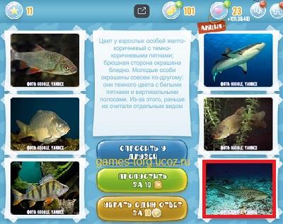 Тайны морских глубин уровень 11