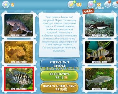 Тайны морских глубин уровень 12