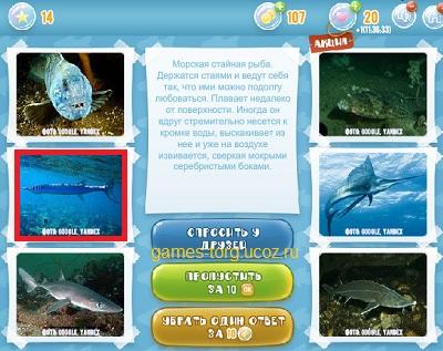 Тайны морских глубин уровень 14