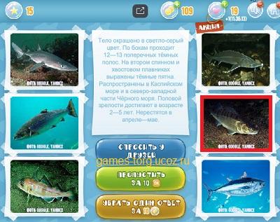 Тайны морских глубин уровень 15