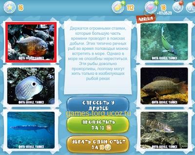 Тайны морских глубин уровень 16