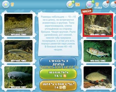 Тайны морских глубин уровень 17