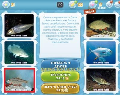 Тайны морских глубин уровень 21