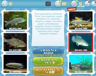 Тайны морских глубин уровень 22