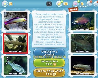 Тайны морских глубин уровень 25