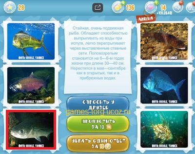 Тайны морских глубин уровень 28