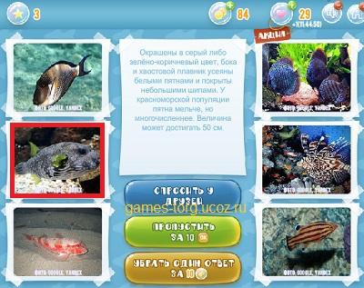 Тайны морских глубин уровень 3
