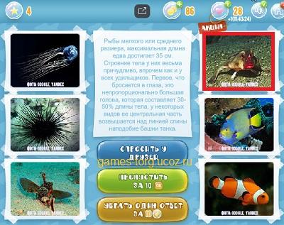Тайны морских глубин уровень 4