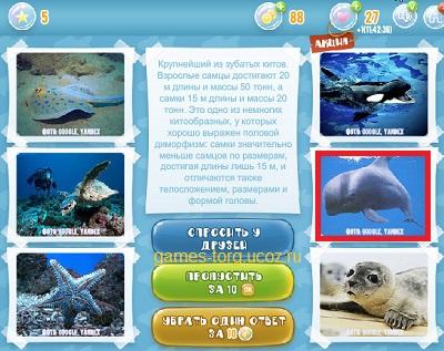Тайны морских глубин уровень 5