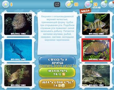 Тайны морских глубин уровень 6